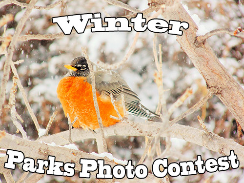 Enter the Winter Parks Photo Contest