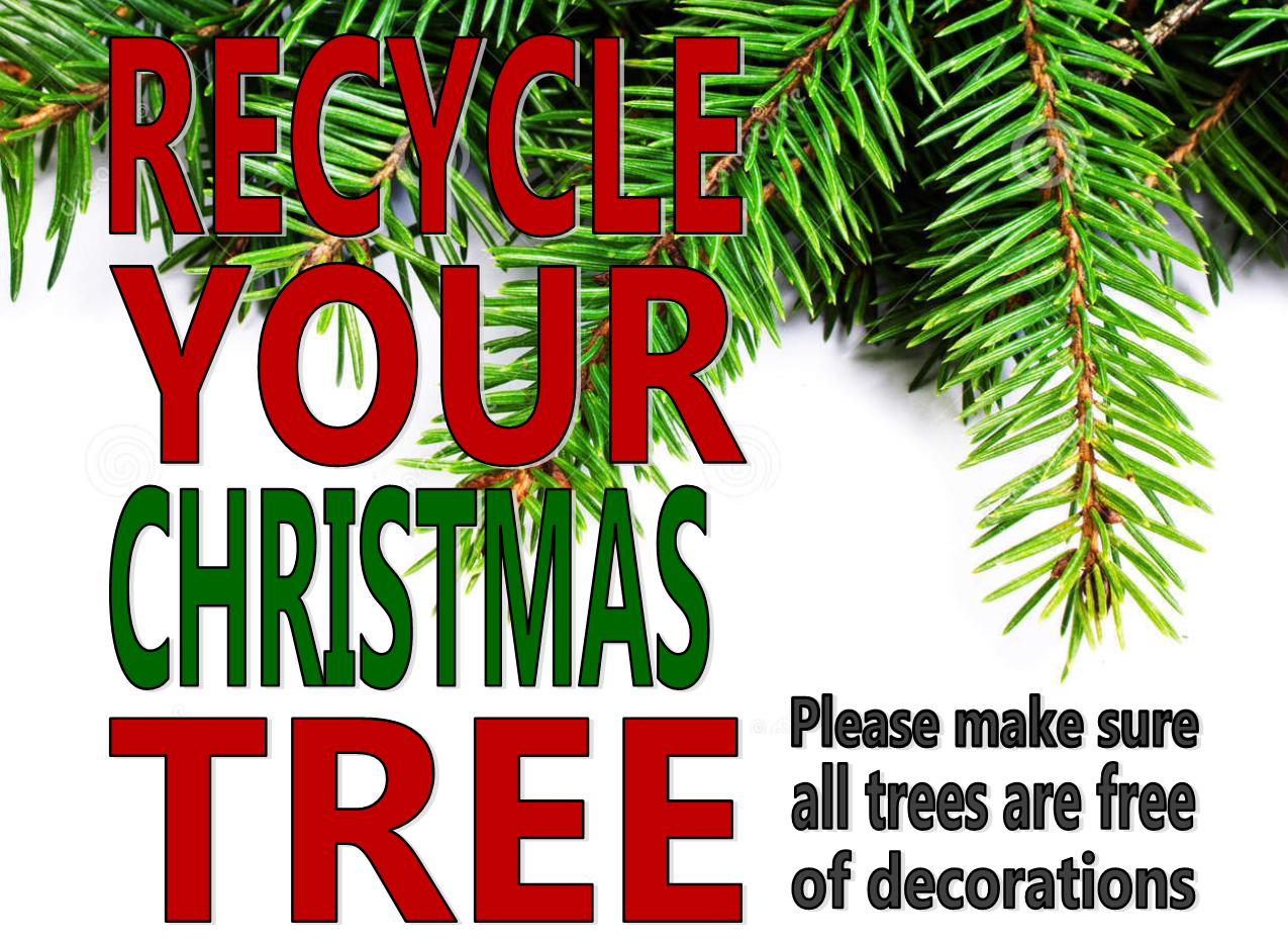 Christmas Tree Drop Off Site Opens December 26th