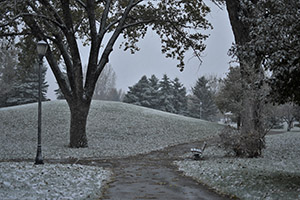 Snowy Path in Lasting Legacy Park
